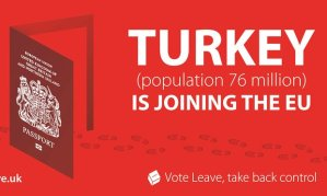 VoteLeave_Turkey